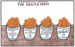 The Health Farm