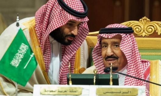 dominatori dell'arabia saudita