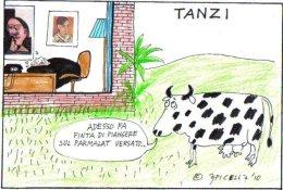 Tanzi
