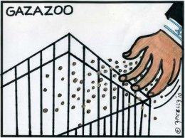 Gazazoo