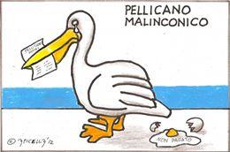 Pellicano Malinconico